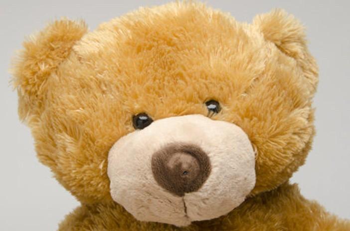 Google Toys Teddy Bear