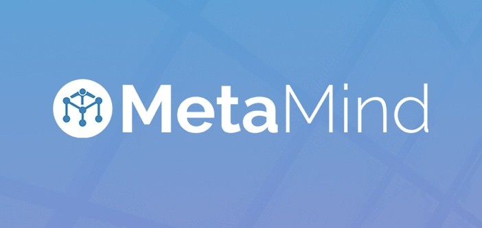 MetaMind Logo